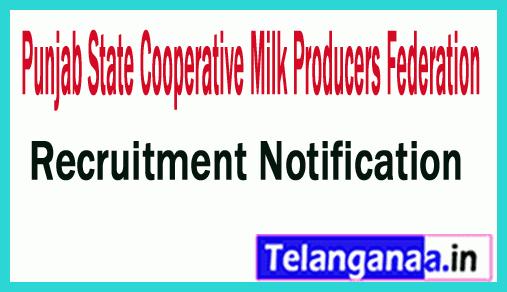 Punjab State Cooperative Milk Producers Federation MILKFED Recruitment Notification