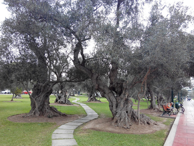 Parque de los Olivos en Lima Perú