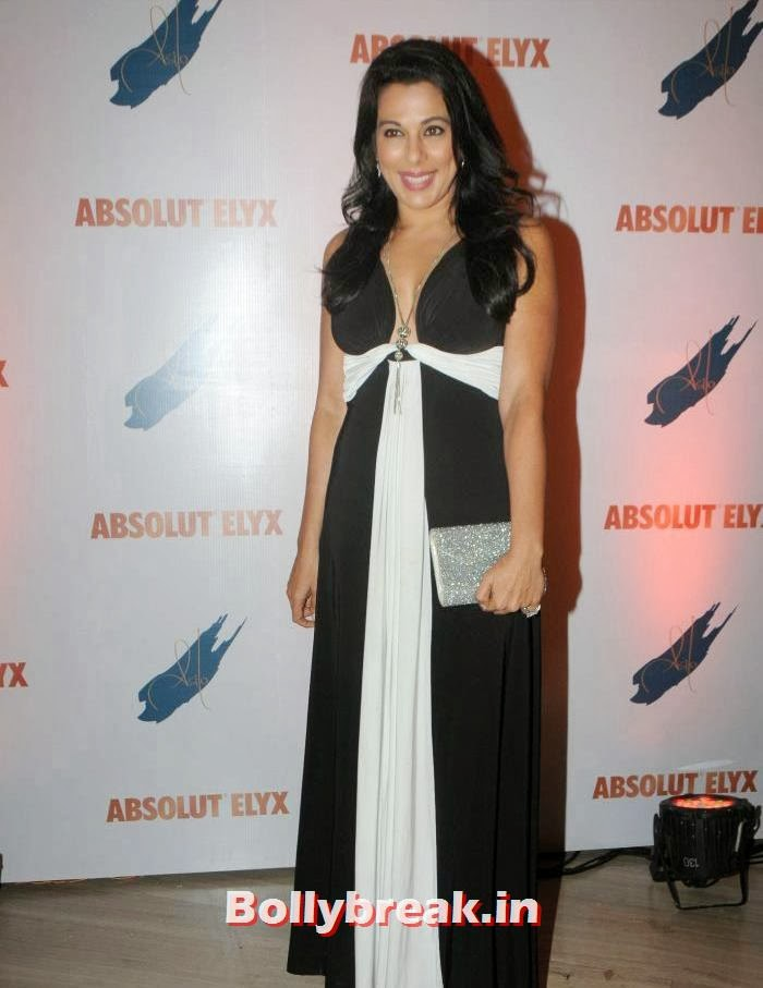 Pooja Bedi, Suchitra Pillai Hosted Absolute Elyx Party