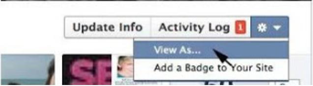 View My Facebook Profile as Public