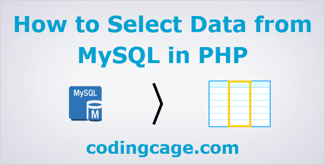 PHP Select Data From MySQL