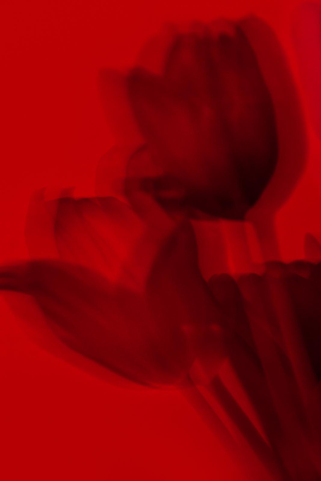 μαύρες γκαλερί φωτογραφιών δωρεάν λήψεις τσόντες