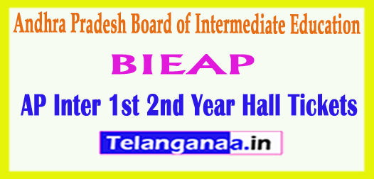 AP Andhra Pradesh Inter 1st 2nd Year Hall Tickets 2018
