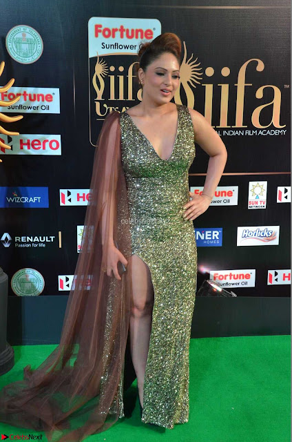 Nikesha Patel in Glittering Leg Split Deep Neck Green Gown at IIFA Utsavam Awards 2017     01.JPG