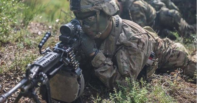 Δημοτικός σύμβουλος Ρεθύμνου: Να αναλάβει τη διακυβέρνηση της χώρας ο στρατός