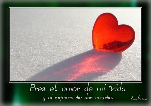 Eres El Amor De Mi Vida Imagenes Bonitas De Amor Con Frases