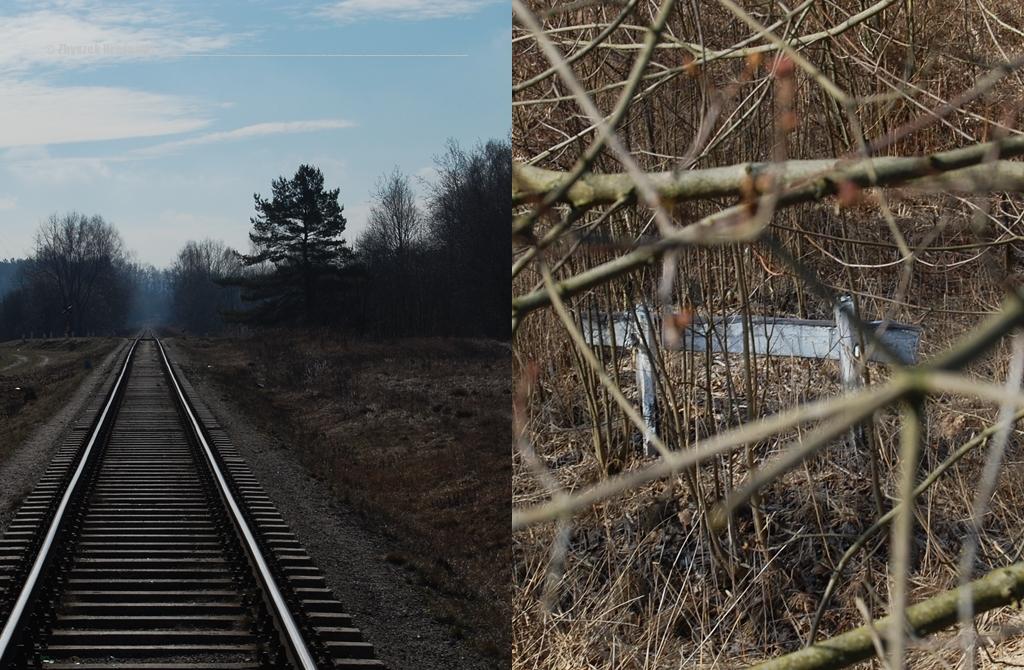 Olsztyn, Track