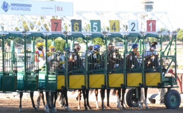 Hipódromo de La Plata gateras partidores