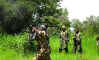 shekau escapes sambisa forest
