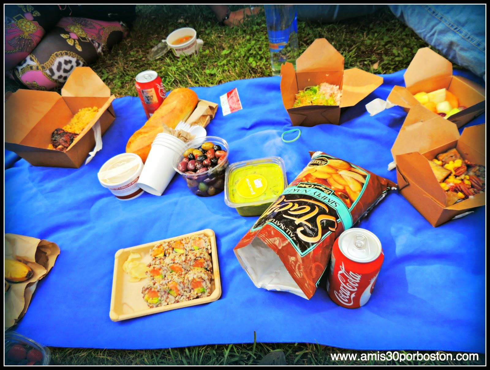 Segunda Visita a Nueva York: Picnic en Central Park