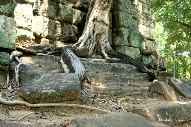 Beng Mealea Temple Siem Reap