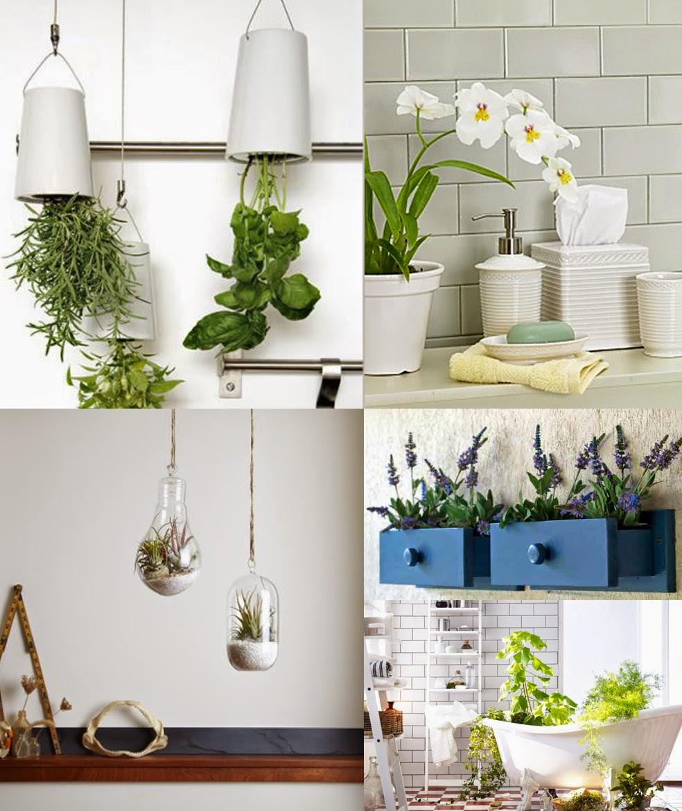 badebanyo las plantas ideales para el ba o