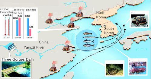 Three Gorges Dam Environmental Impacts