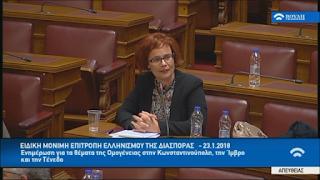 Ε. Σκούφα: «Βασική μέριμνα της ελληνικής πολιτείας πρέπει να είναι η στήριξη του Ελληνισμού στην Ίμβρο, Τένεδο, Κωνσταντινούπολη» (ΒΙΝΤΕΟ)