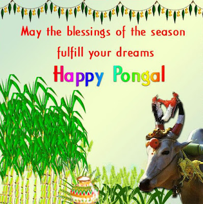 Happy Pongal Sms