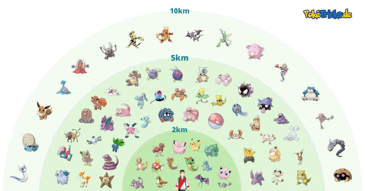 egg 10km 5km 2km
