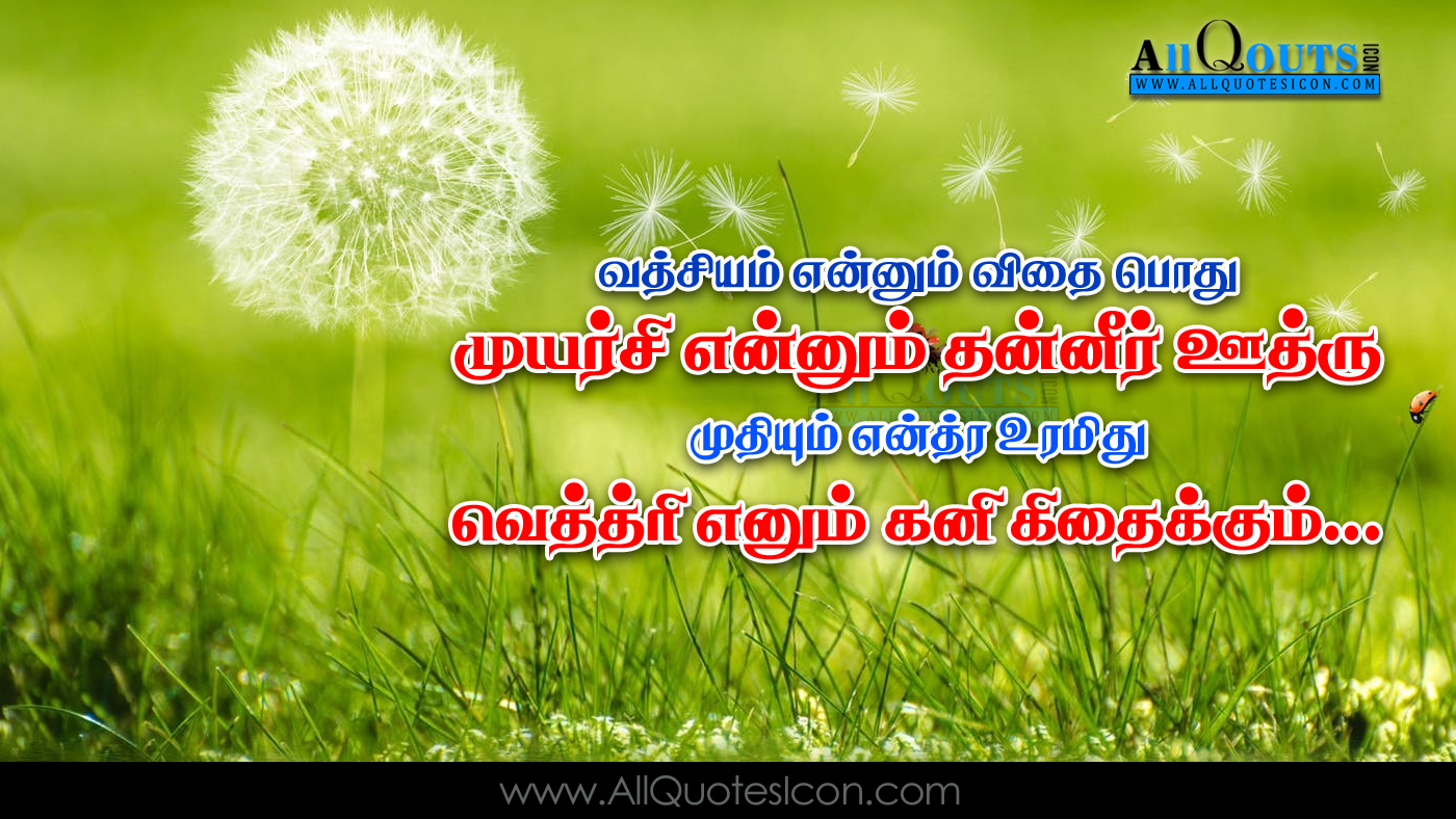 Best Tamil Life Inspiration Quotations Images Beautiful Life