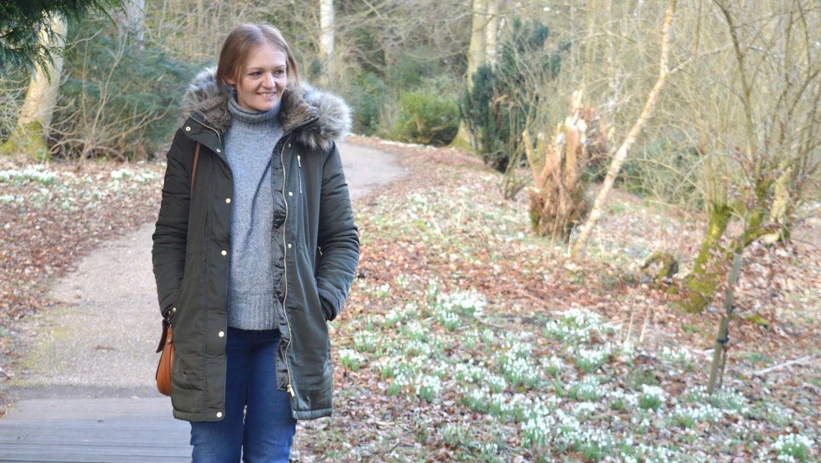 Snowdrops at Wallington, Northumberland