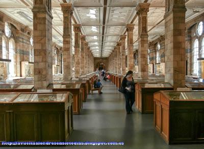 Sala de los minerales del Museo de Historia Natural de Londres.
