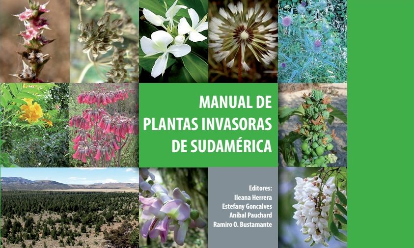 jehuite plantas invasoras en sudam rica