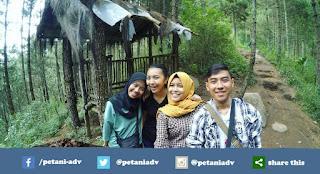 Info Lengkap Pendakian Gunung Andong via Dusun Sawit