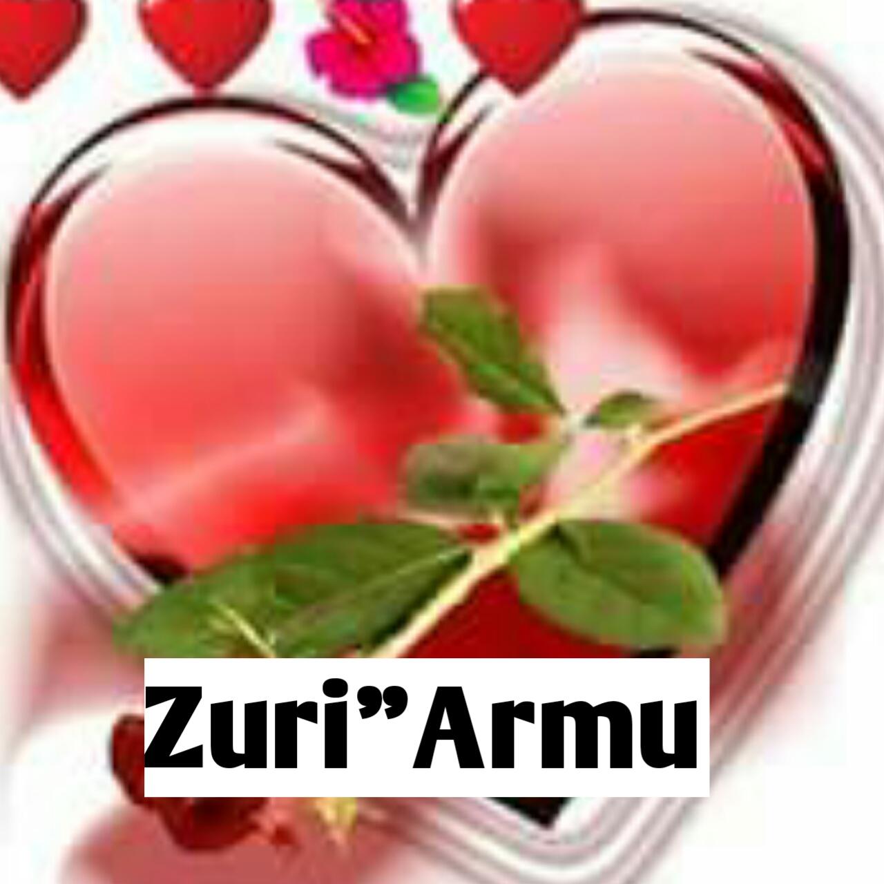Hausa Novel: ZURI