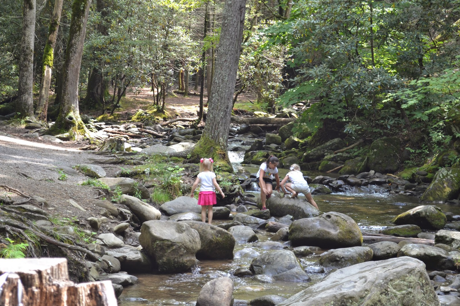 Playing in the creek at Cades Cove!  It is a wonderful and free place to visit!