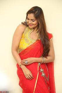 Actress Ashwini in Golden choli Red saree Spicy Pics ~  117.JPG