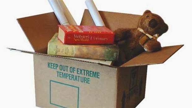 Fantastisk Flytning for dummies: Gode råd til pakning af flyttekasser NU42