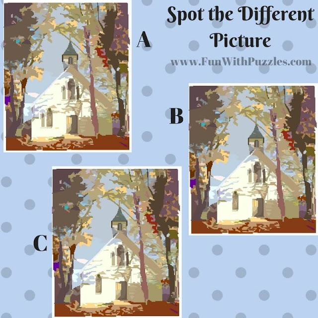 Spot The Different Picture Puzzles-House