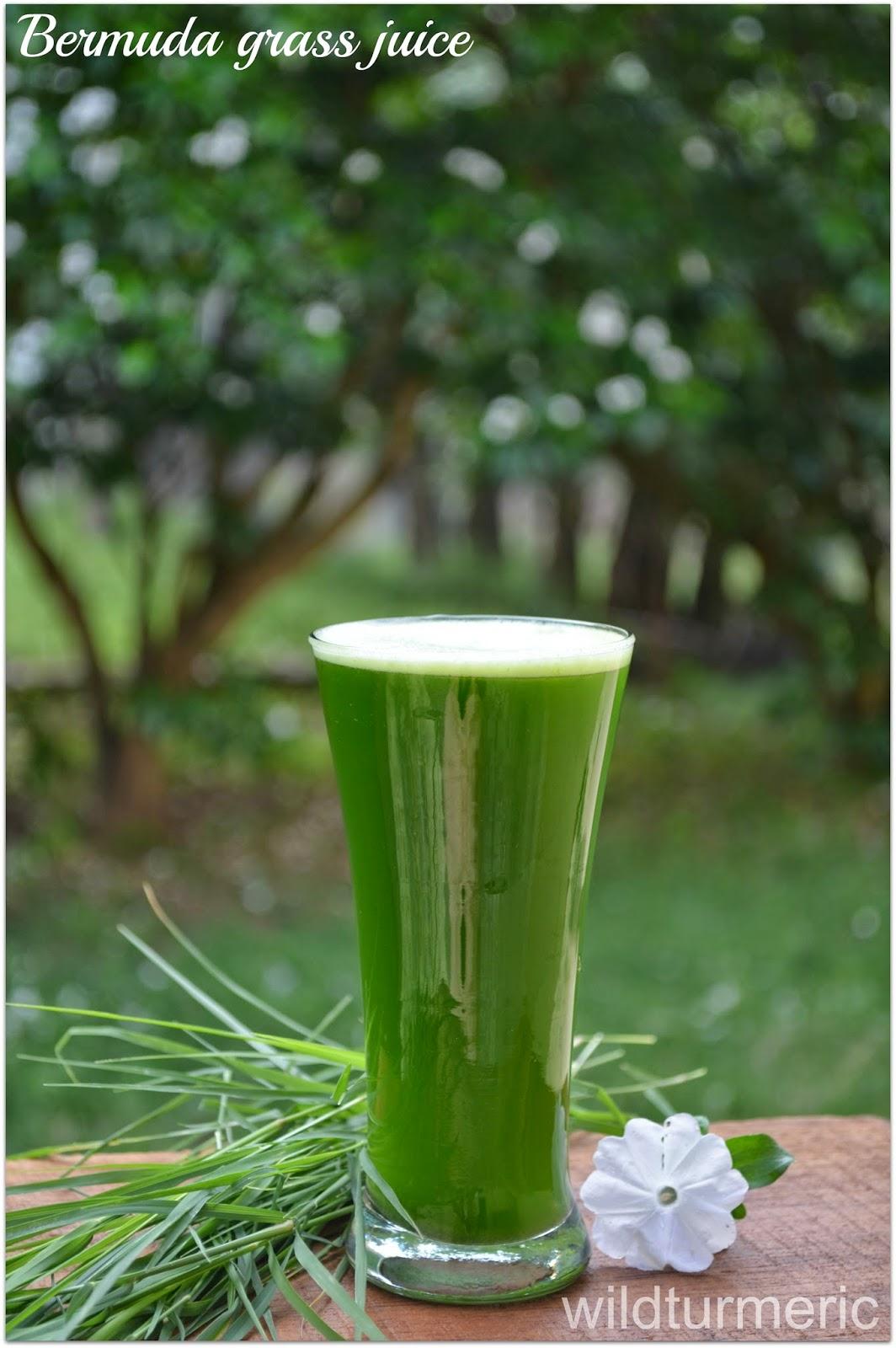 Arugampul Bermuda Grass Juice Health Benefits Recipe