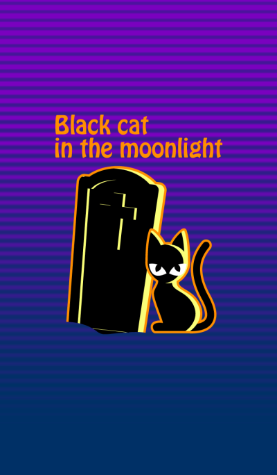 Black cat in the moonlight