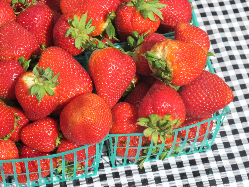 Strawberries at the Third Street Farmers Market in Santa Monica, LA - Los Angeles, California - travel blogger
