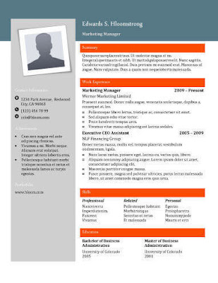 besplatni CV šabloni