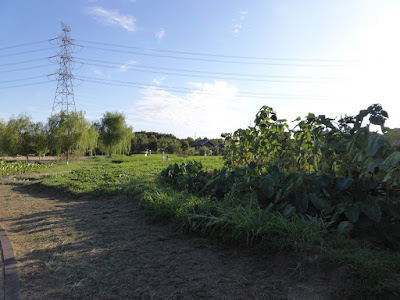 山田池公園 実りの里