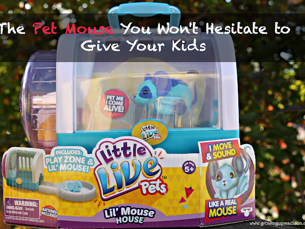 The Pet Mouse You Won't Hesitate to Give Your Kids