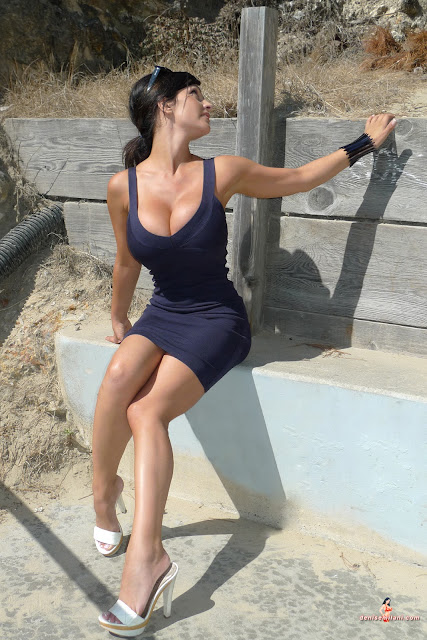 denise milani in a dress - photo #33