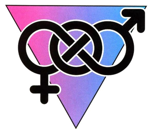 Polyamorous bisexual