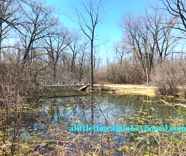 Picturesque spot where a bridge rises above the wetlands at Pratt's Wayne Woods in Illinois