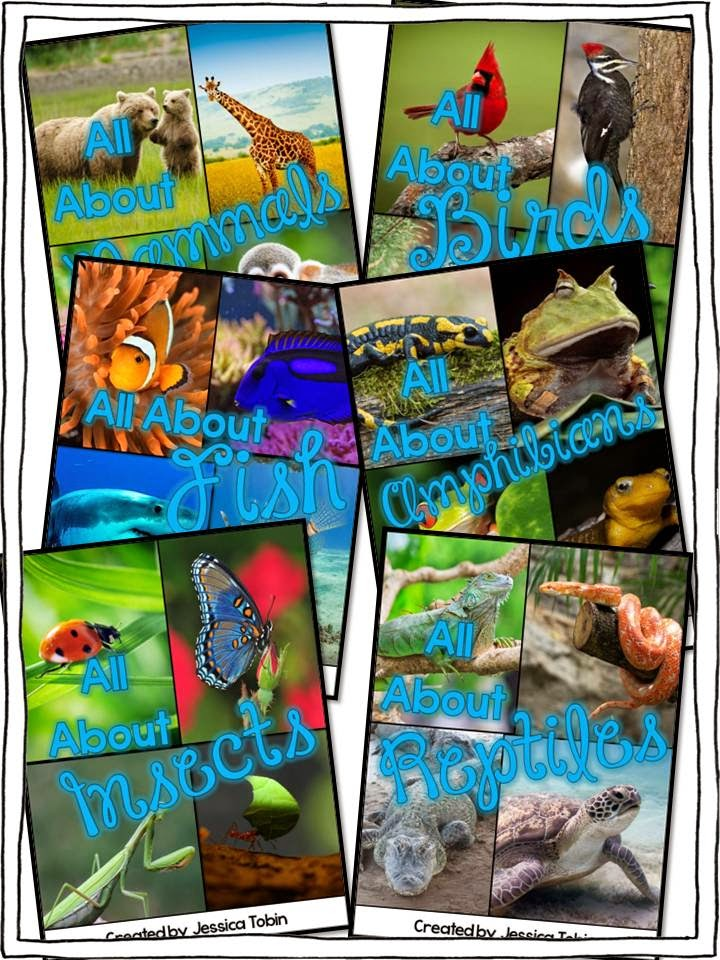 Animals nonfiction activities