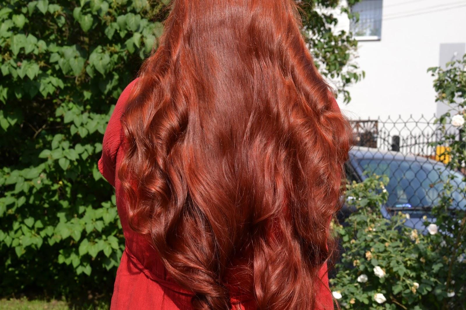 Czas dla włosów, Monika: Kilka nowości w użyciu - olej z pestek moreli, nowy szampon EcoLab