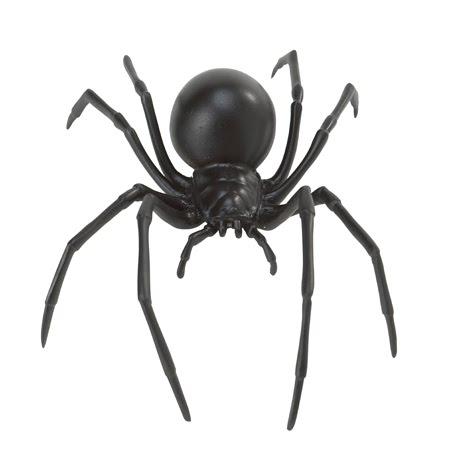 Black Widow Spider Latrodectus Animals Library