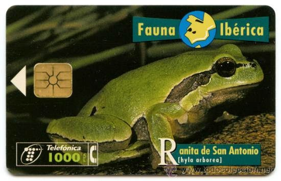 Tarjeta telefónica Ranita de San Antonio (Hyla arborea)