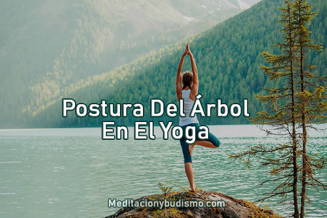 Postura del Árbol en el Yoga