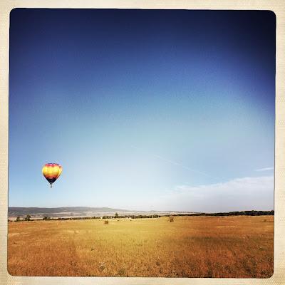 filed and hot air balloon