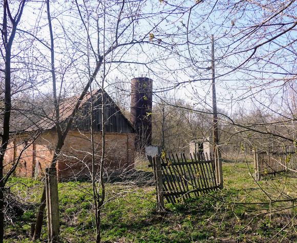Прелестное. Усадьба Бантыша. Хозяйственные постройки закрытого пионерского лагеря