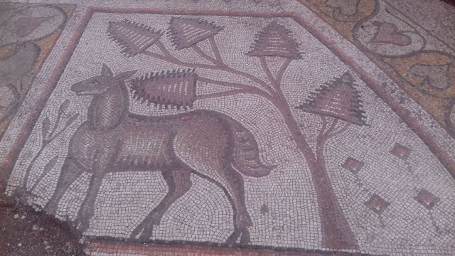 Remains of early Byzantine church, mosaic floors discovered in Syria