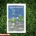 Deal khuyến mãi sách hay Nguyễn Nhật Ánh - Cây Chuối Non Đi Giày Xanh - Bản Đặc Biệt - Tặng Postcard Và Lịch 2018 Để Bàn 13 Tờ