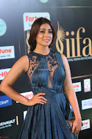 Shriya Saran in Beautiful Transparent Dark Gown IIFA Utsavam Awards 2017 009.JPG