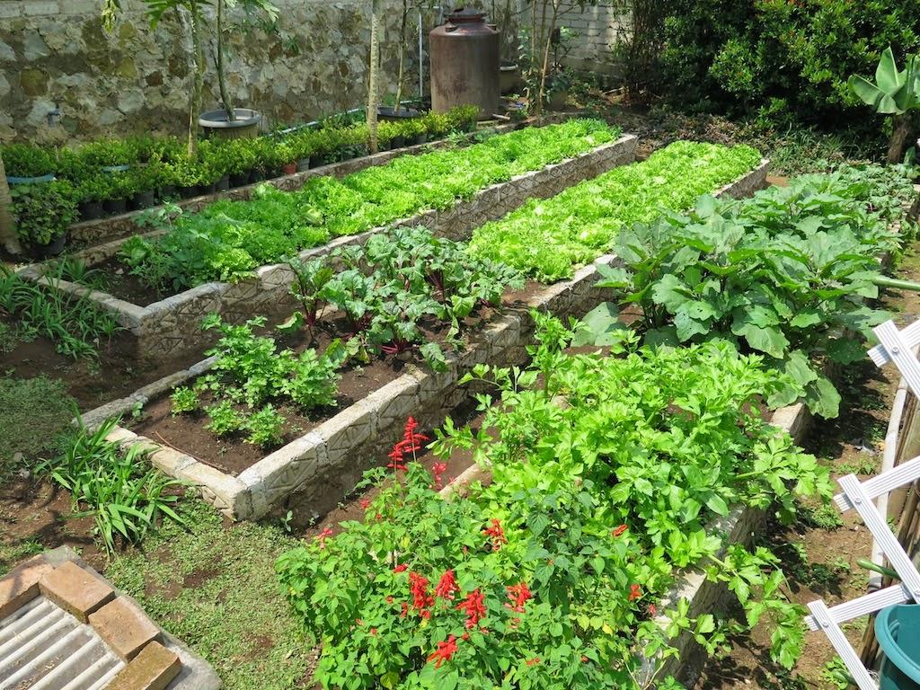 Farmhouse Indonesia